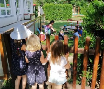 garden lessons during Covid